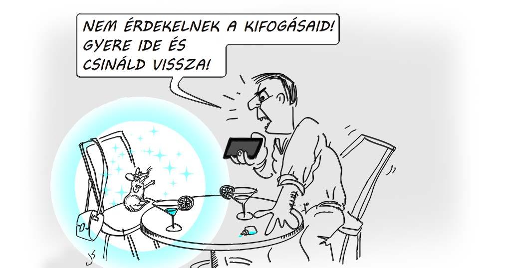 Gina Karikatúra: nem érdekelnek a kifogásaid gyere és csináld vissza