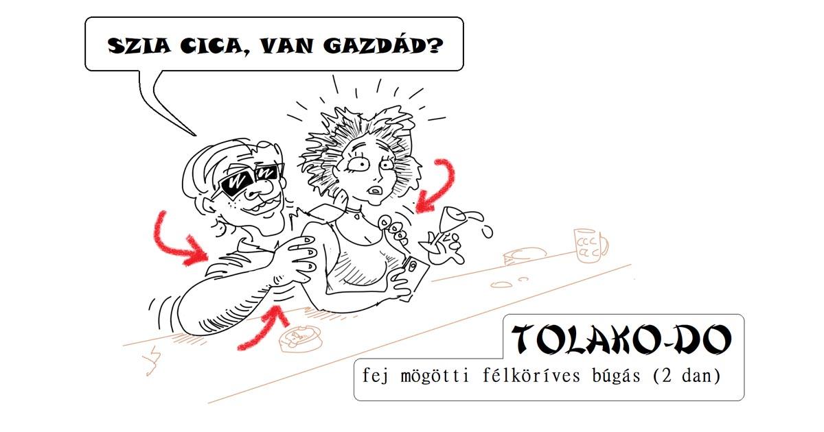 Tolako-Do: Szia Cica van gazdád?