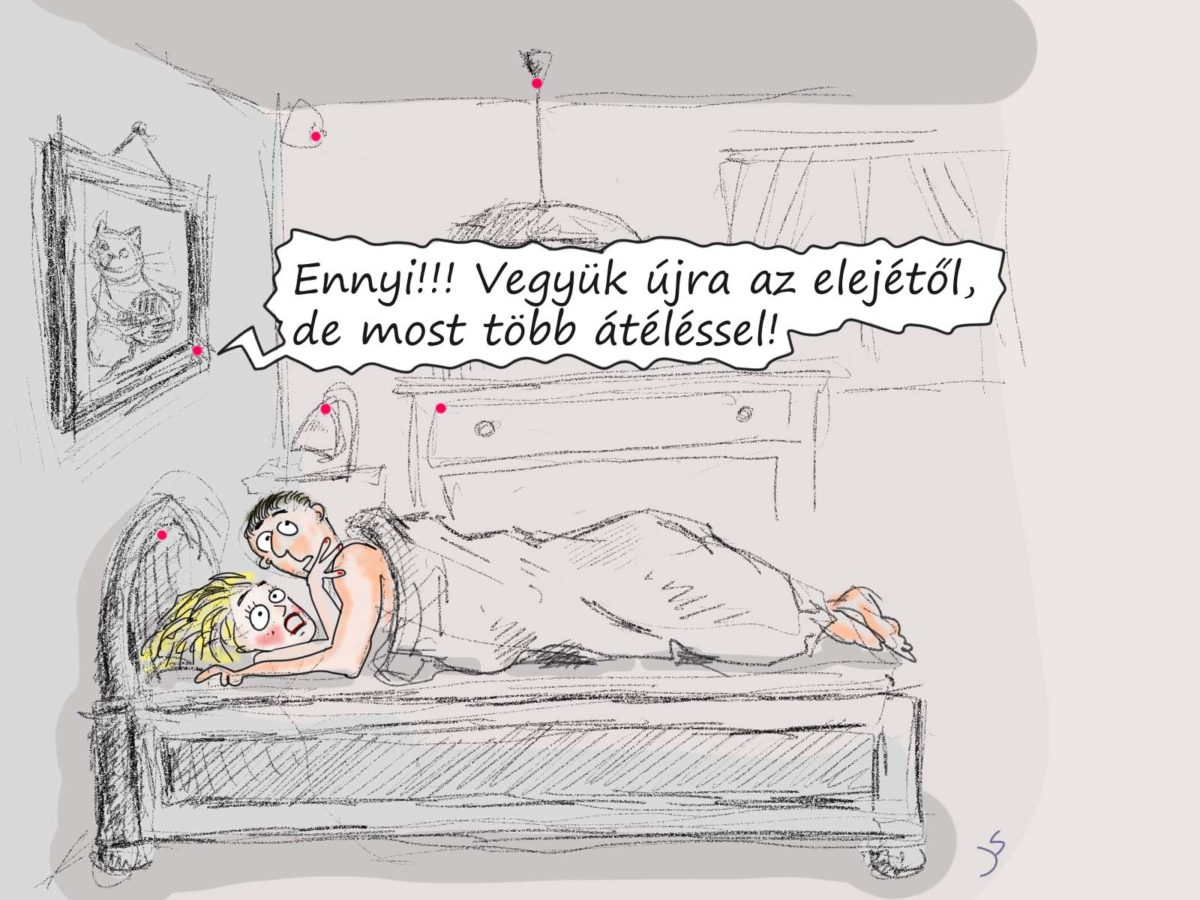 Karikatúra - vegyük újra…
